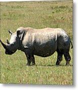 Lake Nakuru White Rhino Metal Print