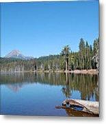 Lake Of The Woods 1 Metal Print