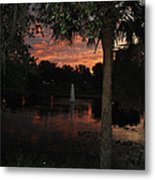 Lake Play Florida Metal Print