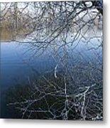 Lake Reflections Metal Print