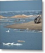Lake Superior And Ice Metal Print