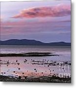 Lake Tahoe Sunset Metal Print