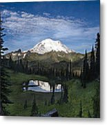 Lake Tipsoo Reflections Metal Print