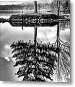 Lake Tree Metal Print