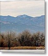 Lake Trees Mountains And Sky Metal Print