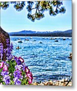 Lake View On Lake Tahoe By Diana Sainz Metal Print
