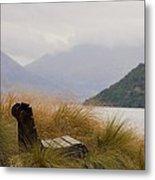 Lake Wakatipu Bench Metal Print