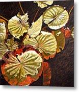 Lake Washington Lily Pad 11 Metal Print