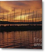 Lake Washington With Mount Rainier And Marina Metal Print