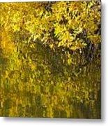 Lake Winona Autumn 12 Metal Print