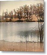 Lakes Edge Metal Print