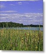 Lakes Of Indiana Metal Print by Thomas Fouch