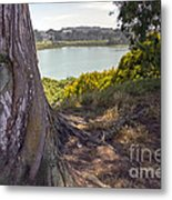 Lakeside Tree Metal Print