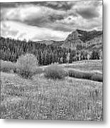 Lamar Valley Looking Towards Specimen Ridge Bw- Yellowstone Metal Print