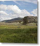 Lamar Valley No. 2 Metal Print