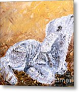 Lamb  Metal Print by Amanda Dinan
