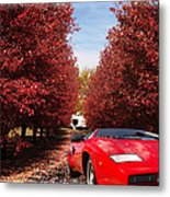 Lamborghini Maple Lane Big House Metal Print