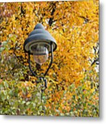 Lamp In The Autumn Leaves Metal Print