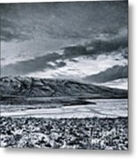 Land Shapes 12 Metal Print