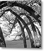 Landscape A10f Nm Co Metal Print