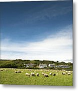 Landscape Near East Prawle In England Metal Print