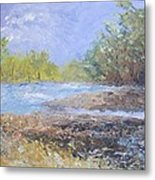 Landscape Whit River Metal Print