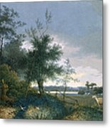Landscape With A Fox Chasing Geese Metal Print