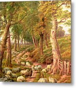 Landscape With Sheep Metal Print