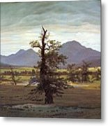 Landscape With Solitary Tree Metal Print