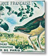 Lapwings Study Of Migration Museum Of Paris Metal Print
