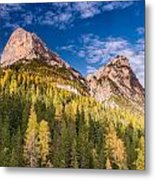 Larch On A Slope Metal Print