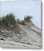 Large Dunes Metal Print by Cathy Lindsey