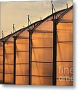 Large Scale Industrial Greenhouse Lit By Sunet Metal Print