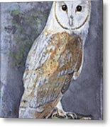 Large White Barn Owl Metal Print
