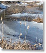 Last Days Of Winter Metal Print