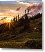 Last Light At Cedar Metal Print by Chad Dutson