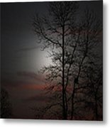 Last Light Metal Print by Ella Char