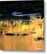 Last Light Near Telluride Metal Print
