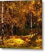 Last Song Of The Autumn 1 Metal Print