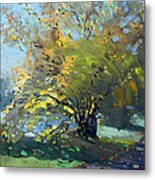Late Afternoon By The River Metal Print