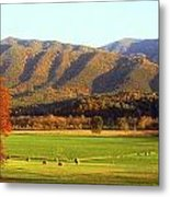 Late Autumn Afternoon In Cades Cove Metal Print