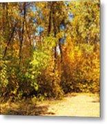 Late Autumn Colours Metal Print