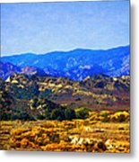 Late Blooms In Hungry Valley Metal Print