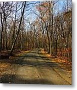 Late Fall At Cheesequake State Park Metal Print