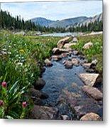Late Summer Mountain Landscape Metal Print