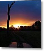Late Sunset And Tree Metal Print