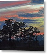 Late Sunset Trees In The Mist Metal Print