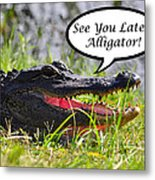 Later Alligator Greeting Card Metal Print by Al Powell Photography USA