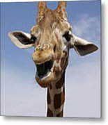 Laughing Giraffe Metal Print