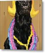 Laughter Yoga For Dogs Metal Print